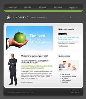 A screenshot of a typical business website layout.