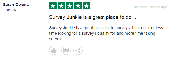 A positive review of Survey Junkie saying it's a great play to take surveys.