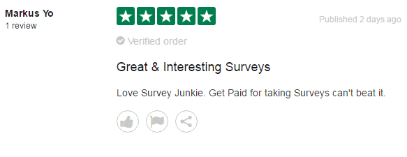 A positive review from a Survey Junkie user.