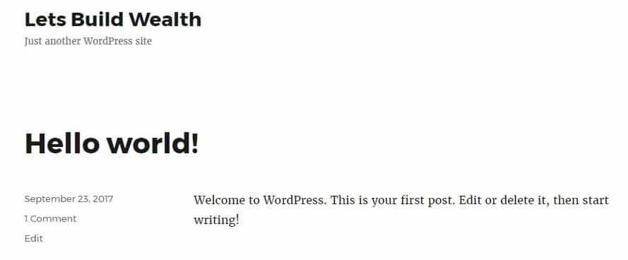 An image of the default WordPress theme installed on our test website.