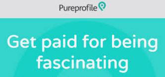 A picture of Pure Profile's logo and description.