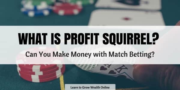 what is profit squirrel cover