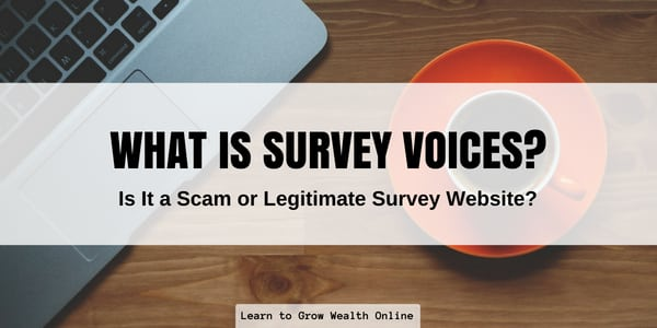what is survey voices scam review image