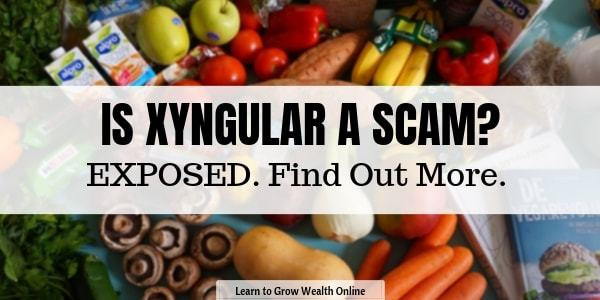 is zyngular a scam review image