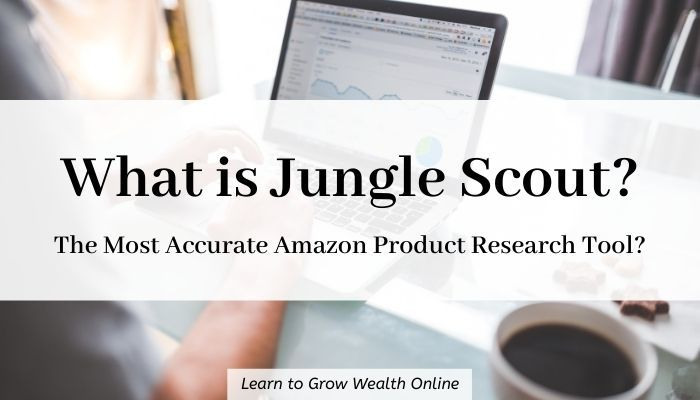 Cover image for what is Jungle Scout.com