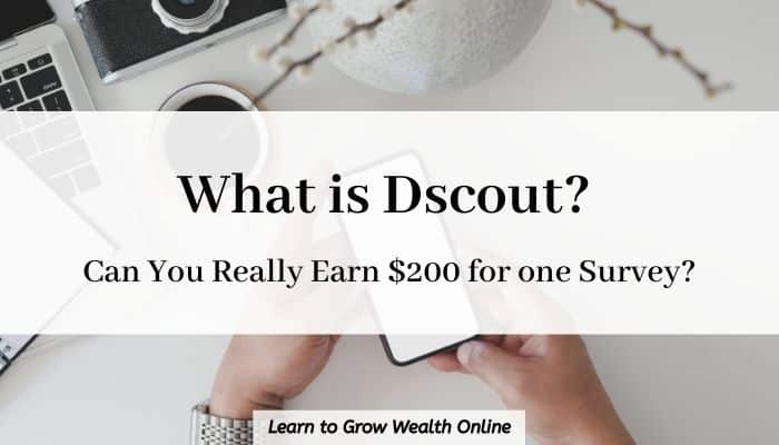 cover image for what is dscout
